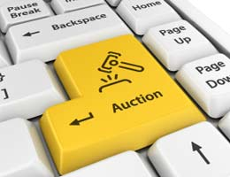 Bid on auction sites