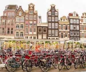Bikes parked, Dutch houses on the background in Netherlands © Andrii Lutsyk/Getty Images