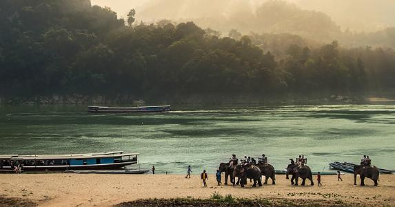 Elephants and boat on shore of island © iStock