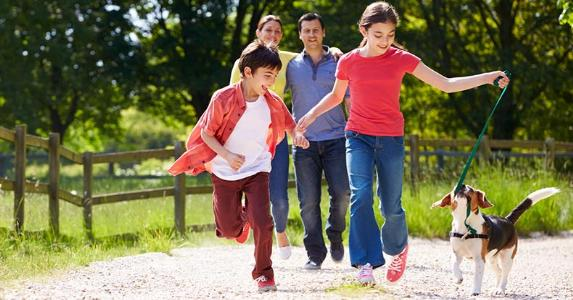 Family walking and running pet dog in a park | Monkey Business Images/Shutterstock.com