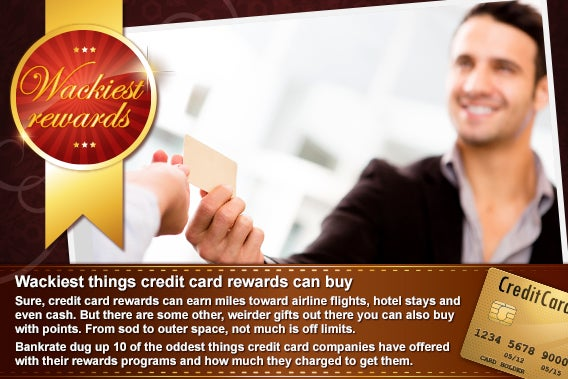 Wackiest things credit card rewards can buy