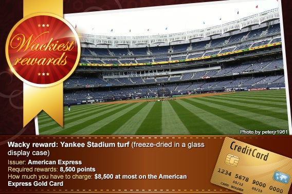 Yankee Stadium turf