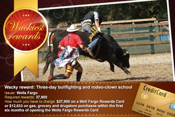 Three-day bullfighting and rodeo-clown school