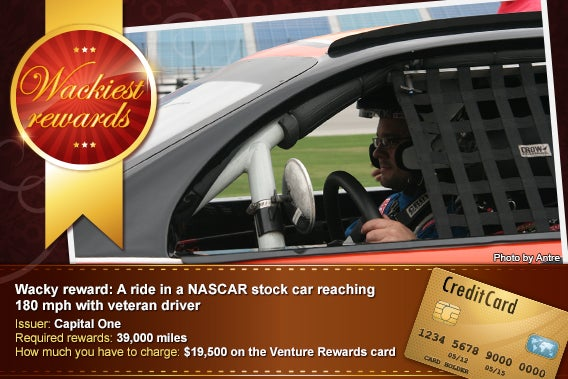 A ride in a NASCAR stock car reaching 180 mph with veteran driver