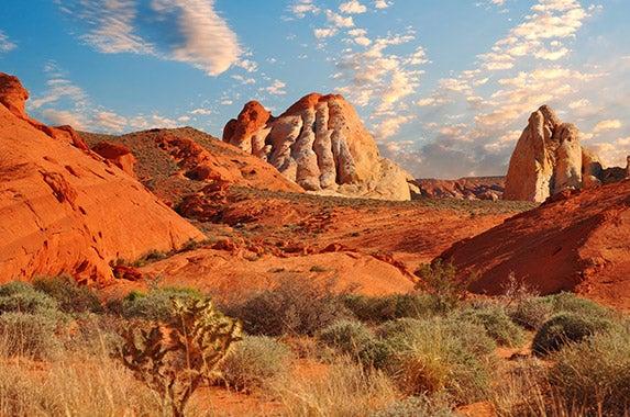 Nevada © Darren J. Bradley/Shutterstock.com