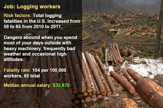 Dangerous jobs: Logging workers © Fotolia.com