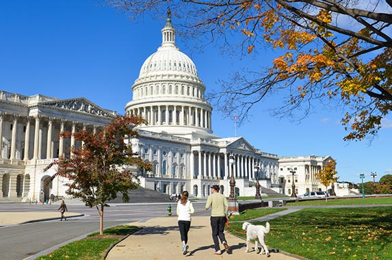 District of Columbia | Orhan Cam/Shutterstock.com