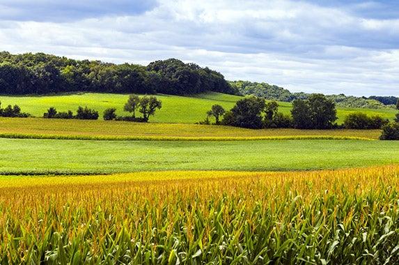 Wisconsin © MaxyM/Shutterstock.com