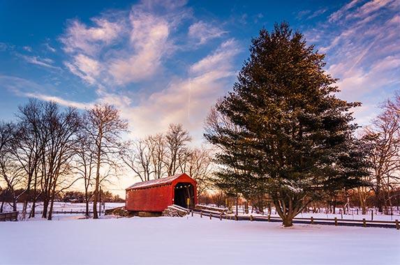 Top 10 states for foreclosure © Jon Bilous/Shutterstock.com
