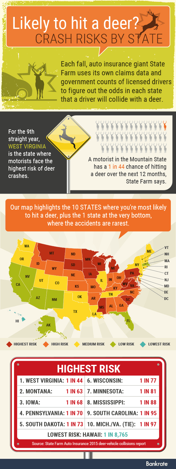 Crash risks by state; Car, deer, deer sign © Shutterstock.com