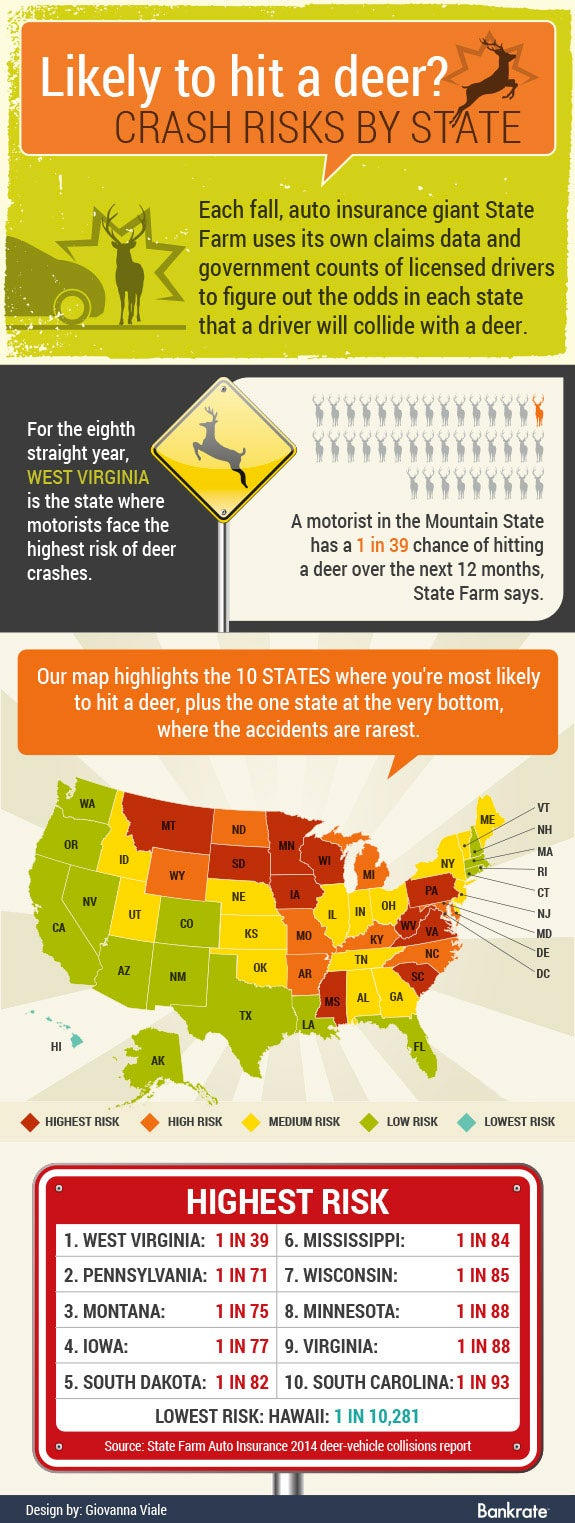 Crash risks by state | Car © Kittichai/Shutterstock.com | Deer © eva_mask/Shutterstock.com | Deer sign © pockygallery/Shutterstock.com