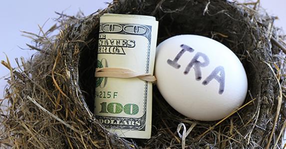 IRA egg and money in nest © Don Mammoser/Shutterstock.com