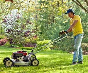 Man mowing his lawn © Rock and Wasp/Shutterstock.com