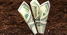 Money growing out of soil © isak55/Shutterstock.com