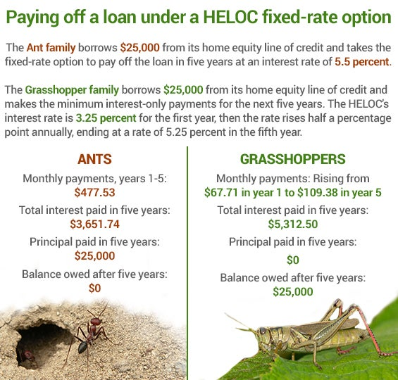 Paying off a loan under a HELOC fixed-rate option | Ants & ant hole: © Ljupco Smokovski/Shutterstock.com; Grasshopper: © Paul Reeves Photography/Shutterstock.com