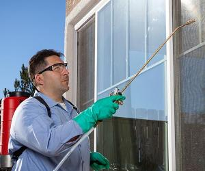 Pest control technician spraying insecticide | Oxford/Getty Images
