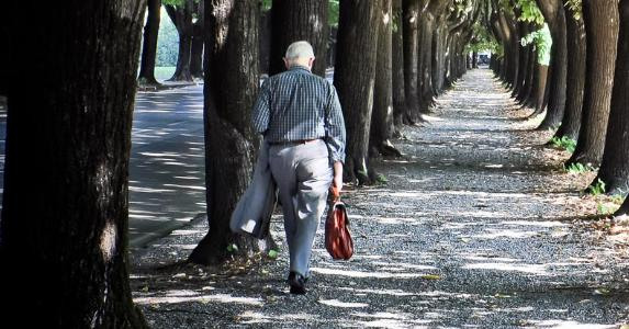 Senior businessman walking tree lined path © Martin M303/Shutterstock.com