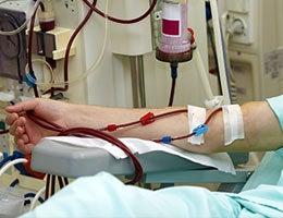 Kidney disease © Picsfive/Shutterstock.com