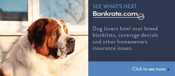 Dog lovers howl over breed blacklists, coverage denials and other homeowners insurance issues. © Katerina Planina/Shutterstock.com