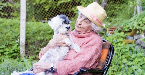 Valid identification © Boryana Manzurova/Shutterstock.com