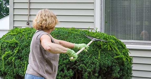 DIY your yard's makeover © iStock