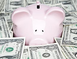 Check out the fees of the new fund options © Kinetic Imagery/Shutterstock.com
