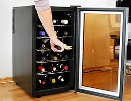 Wine coolers © Calek/Shutterstock.com