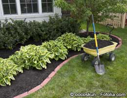 Landscaping plants and patio goods