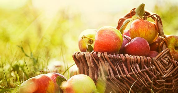 Fruits on sale: Apples and pears, plus summer stone fruit © mythja/Shutterstock.com