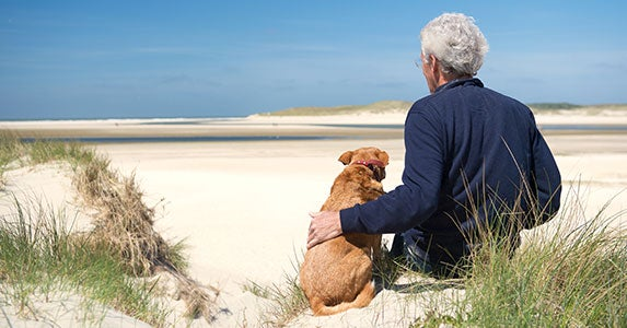 Pet-related tax write-offs: Pet trusts © Ivonne Wierink/Shutterstock.com