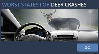 Deer crashes by state © Fotolia.com